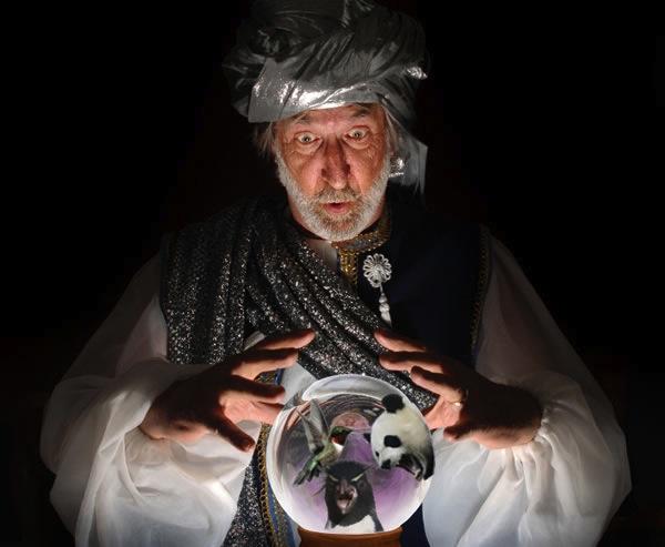 google-seo-crystal-ball