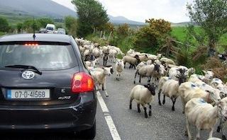 rush-hour-in-ireland-320x198